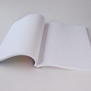 brochure fastback  2